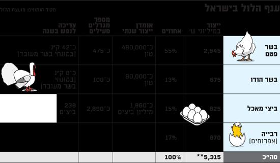 ענף הלול בישראל