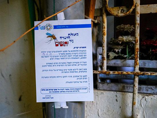 הדברת יתושים עריית תל אביב / צילום: שלומי יוסף