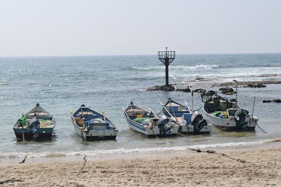 סירות דיג בג'יסר א זרקא / צילום: איל יצהר