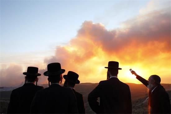 """משקיפים על שריפת הענק בהר הכרמל שכילתה 25 קמ""""ר של יערות והביאה למותם של 44 אנשים, דצמבר 2010 / צילום: ניר אליעס, רויטרס"""