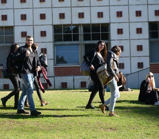 אוניברסיטת תל אביב / צילום: איל יצהר