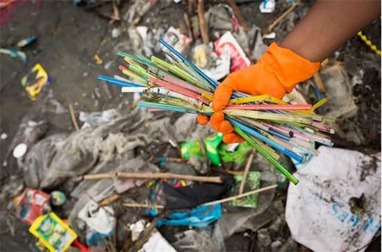 ניקוי קשים מחופי הפיליפינים / צילום: Daniel M?ller, Greenpeace