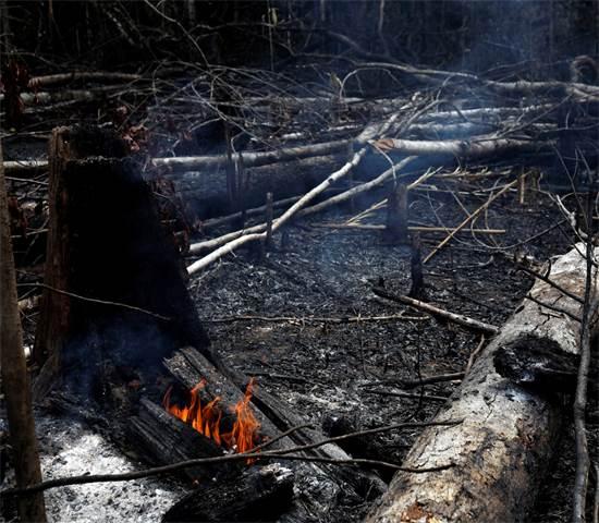בשריפה ביערות האמזונס בברזיל / צילום: Bruno Kelly, רויטרס