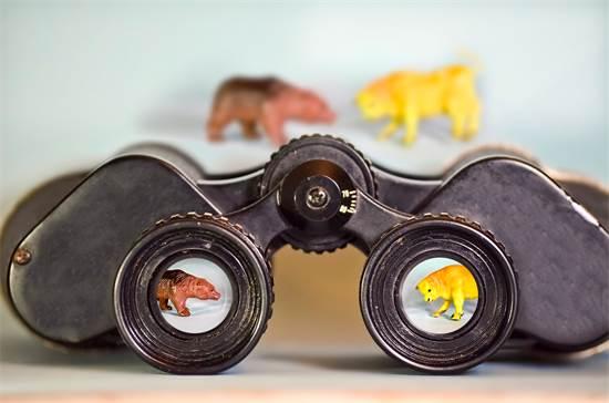 שוק חסר וודאות יכול להוות גם הזדמנות / צילום: Shutterstock/א.ס.א.פ קרייטיב