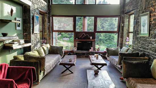 מבט אל היער מהחלון של מלון Anavasi Mountain Resort / צילום: משה פילברג