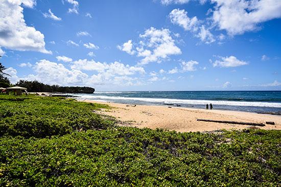 חוף קאואיי / צילום: shutterstock