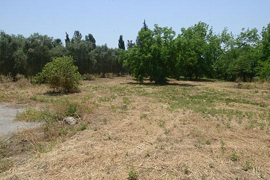 קרקע למגורים בגני יהודה / צילום: איל יצהר,