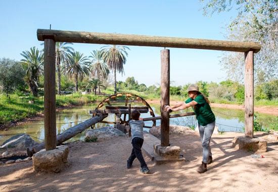 מתקנים חקלאיים משוחזרים בנאות קדומים / צילום: אלדד מאסטרו