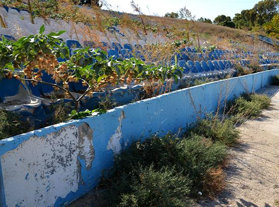 העשבים צומחים באצטדיון רמת גן / צילום: תמר מצפי