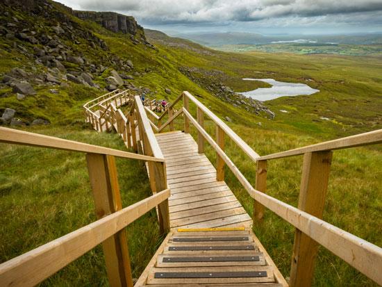 שביל הליכה /  צילום: Shutterstock א.ס.א.פ קריאייטיב