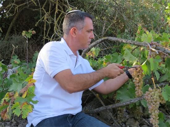 """ד""""ר שיבי (אלישיב) דרורי, מרכז מסלול לימודי היין באוניברסיטת אריאל/צילום: דוברות אוניברסיטת אריאל"""
