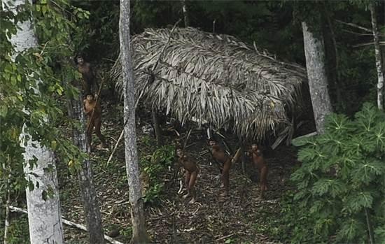 בני שבט ילידי שמעולם לא בא במגע עם העולם שמחוץ לאמזונס מגיבים להופעתו של מטוס שחג מעליהם, מרץ 2014 / צילום: Lunae Parracho, רויטרס