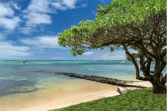 """קלאב מד La Pointe aux Canonniers, רצועת חוף באורך 1 ק""""מ / צילום: יח""""צ"""