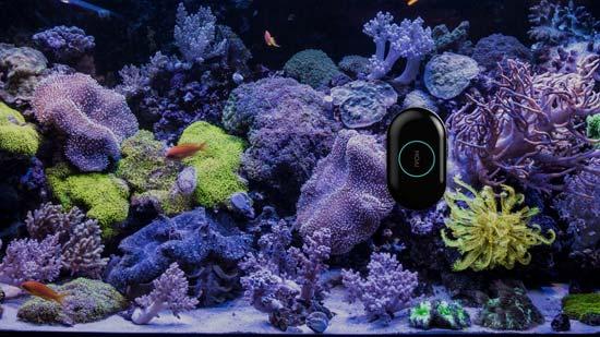 צוללת וידיאו  לדגי האקווריום/ צילום:יחצ