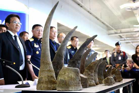 קרני קרנפים שנתפסו בנמל התעופה הבינלאומי של בנגקוק /  צילום: רויטרס Athit Perawongmetha