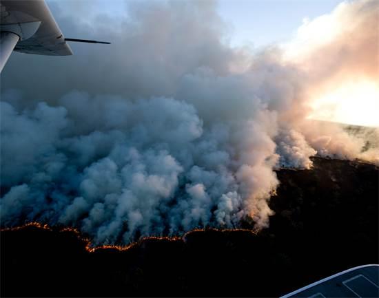 "השריפות באמזונס ב-2008 / צילום: Greenpeace / Daniel Beltr?, יח""צ"