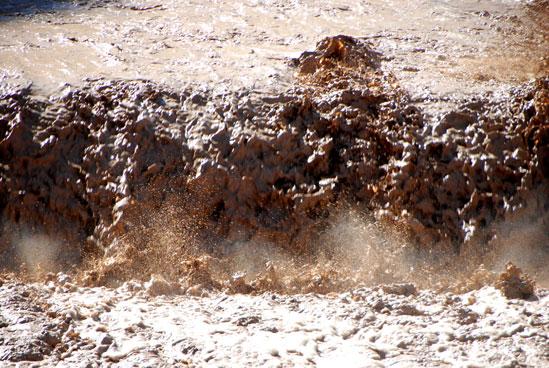הצפה במדבר יהודה / צילום:יותם יעקובסון