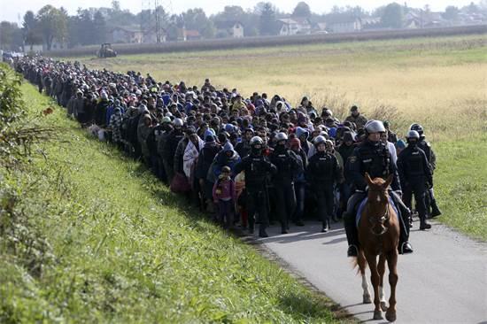 שיירה ארוכה של מאות פליטים מהמזרח התיכון מובלת על ידי שוטרים סלובניים לא רחוק מן הגבול עם קרואטיה, אוקטובר 2015 / צילום: Srdjan Zivulovic, רויטרס