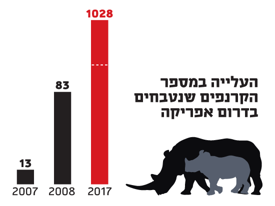 העלייה במספר הקרנפים