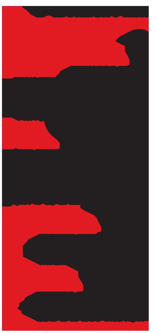 הבחירות במספרים
