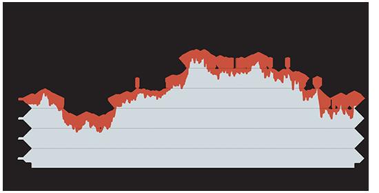 רכבת ההרים של מניית דלק רכב עלייה של 14 מאז שאגמון רכש שליטה בחברה