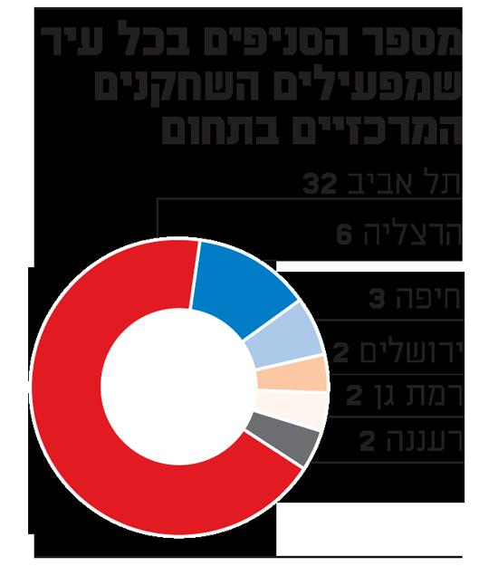 מספר הסניפים בכל עיר שמפעילים השחקנים המרכזיים בתחום