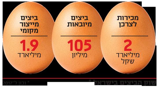 שוק הביצים בישראל