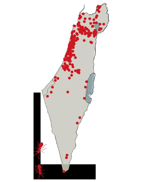 מפת התפשטות נמלת האש בישראל,  פברואר 2018