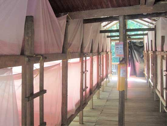 """מלון ה""""שובך"""" שלנו, עם שורות של מיטות קומתיים, מצוידות בכילות נגד יתושים, חרקים, צפרדעים ונחשים/צילום: גלית גוטמן"""