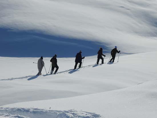 טרק בסנדלי שלג /  צילום: גליה גוטמן