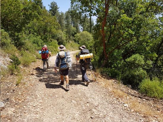 צועדים על שביל ישראל/  צילום : יפתח שמעוני