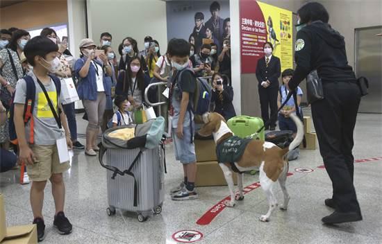 """משתתפים בטיסות """"הכאילו"""" בטיוואן / צילום: Chiang Ying-ying, AP"""