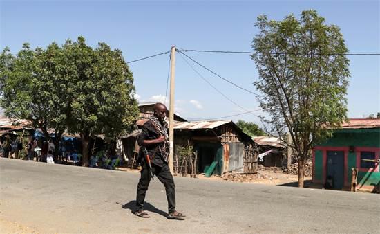 חבר מליציה חמוש מפטרל בכפר בסמוך למחוז טיגרי באתיופיה / צילום: Tiksa Negeri, רויטרס