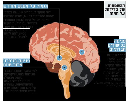 ההשפעות-של-בדידות-על-המוח