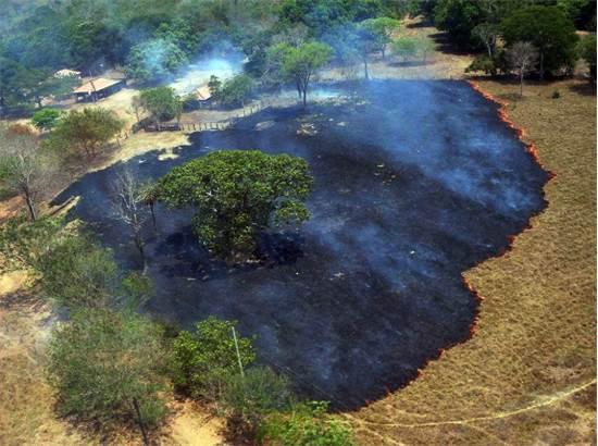 נזקי השריפות בשטחי הפנטנאל / צילום:  Defensa civil courtesy / Latin America News Agenc, רויטרס
