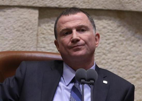 """יו""""ר הכנסת יולי אדלשטיין / צילום: יצחק הררי דוברות הכנסת"""
