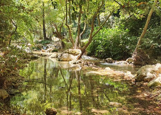 פינות חמד עם בריכות לשכשוך בנחל כזיב / צילום: יותם יעקבסון