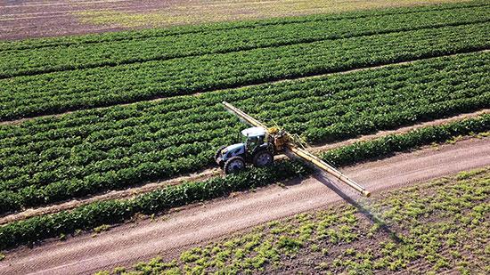 שדה חקלאי במרכז הארץ / צילום: shutterstock, שאטרסטוק
