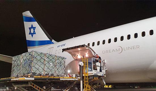 משלוח של כמיליון ביצים שנחת בישראל / צילום: לסר