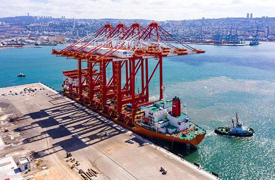 העגורנים לנמל החדש, שהגיעו ביום שישי האחרון. זרוע של 72 מטר  / צילום: ניר הופמן