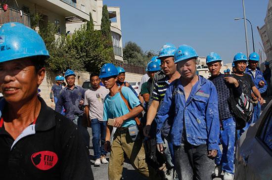 """פועלים סינים. """"להגדיל את מכסת העובדים הזרים""""  / צילום: shutterstock, שאטרסטוק"""