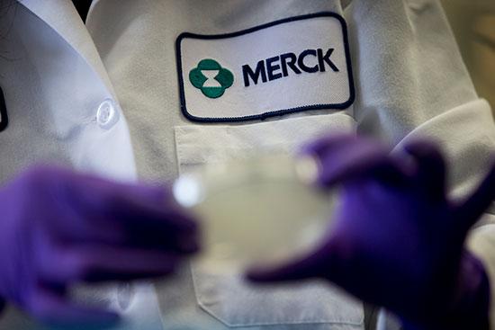 בתוך מעבדה של חברת Merck & Co / צילום: Matt Rourke, Associated Press