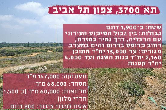 תא 3700, צפון תל אביב / צילום: שלומי יוסף