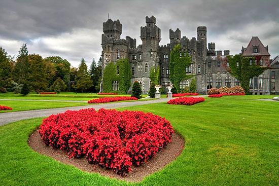 הגנים של מלון Ashford Castle, אירלנד / צילום: shutterstock, שאטרסטוק