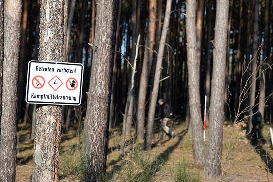 """""""הכניסה אסורה, תהליך סילוק פצצות"""". עד כה סולקו 7 פצצות מהיער שייכרת לטובת המפעל העתידי של מאסק / צילום: AXEL SCHMIDT, רויטרס"""