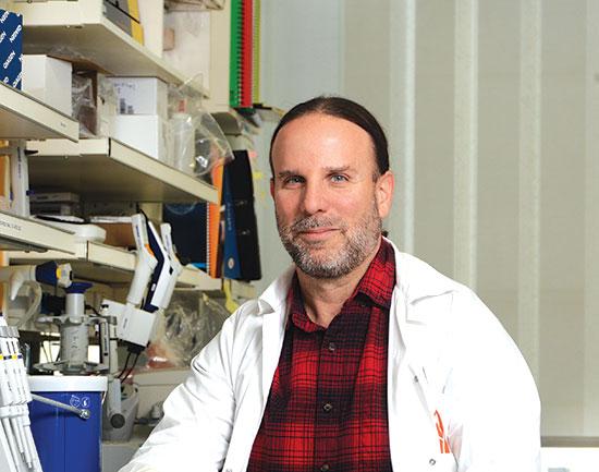 """ד""""ר תומר הרץ, המכון לביוטכנולוגיה / צילום: איל יצהר, גלובס"""