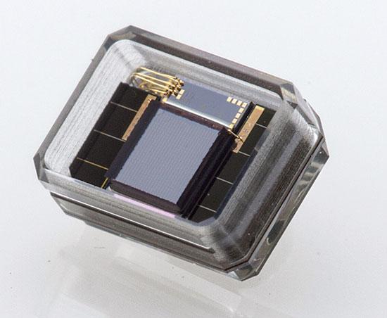 המוצר להשתלה של ננו רטינה. משתלב עם רקמות ביולוגיות / צילום: Nano Retina