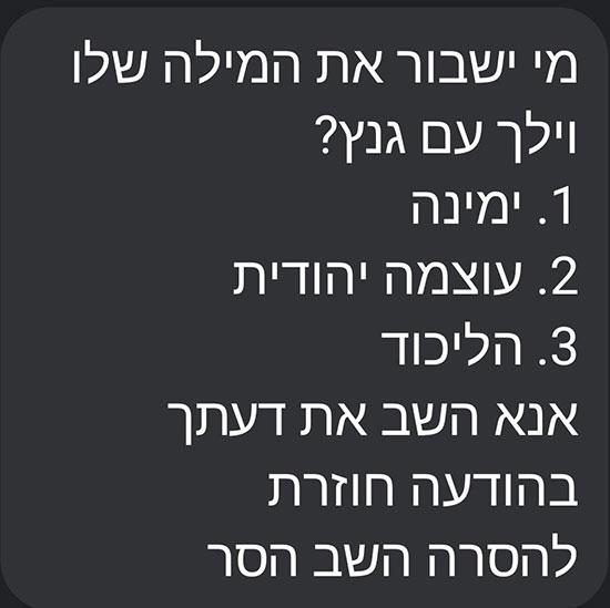 הודעת האס אם אס של עוצמה יהודית / צילום: צילום מסך, גלובס