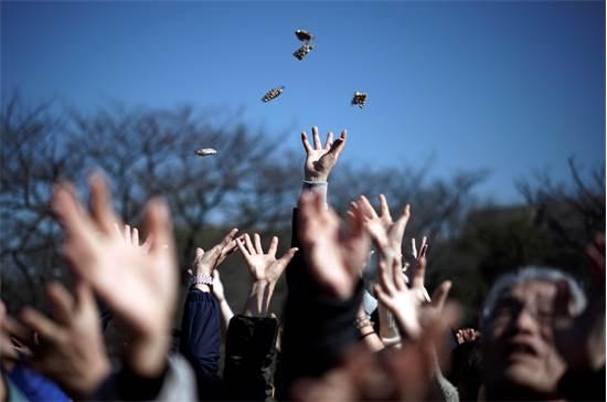 """אנשים מנסים לתפוס שקיות שעועית מזל המפוזרת על ידי ידוענים במהלך """"Mame-maki"""", טקס השלכת שעועית / צילום: Eugene Hoshiko, AP"""