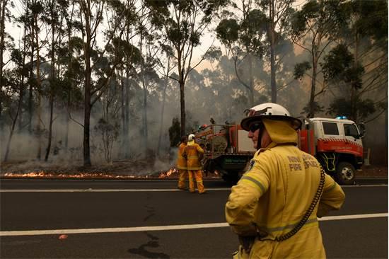 כבאים אוסטרלים מנסים להשתלט על שריפה / צילום: רויטרס